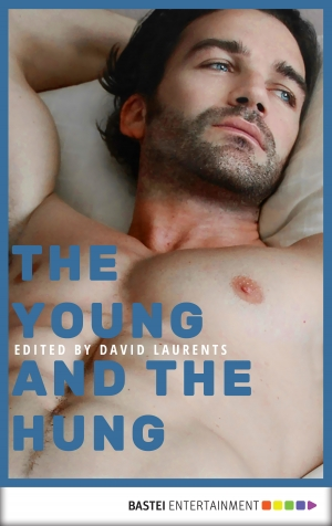 Cover zur kostenlosen eBook-Leseprobe von »The Young and The Hung«
