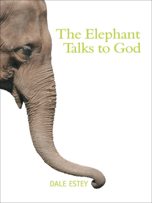 Cover zur kostenlosen eBook-Leseprobe von »The Elephant Talks to God«