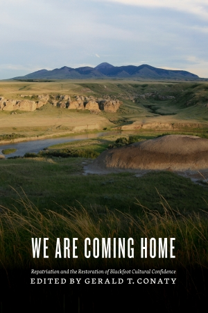 Cover zur kostenlosen eBook-Leseprobe von »We Are Coming Home«