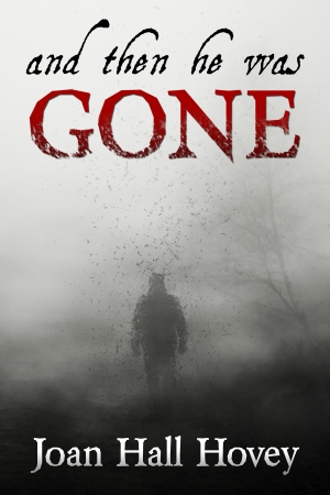 Cover zur kostenlosen eBook-Leseprobe von »And Then He Was Gone«