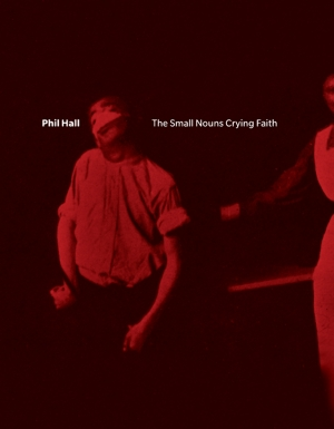 Cover zur kostenlosen eBook-Leseprobe von »The Small Nouns Crying Faith«